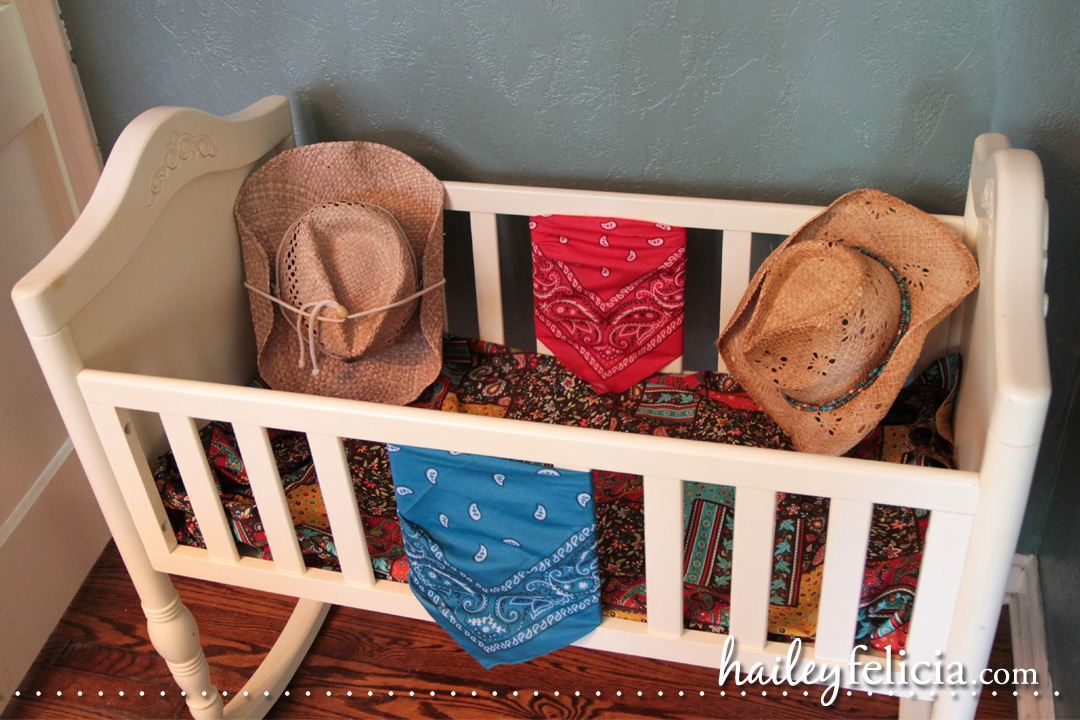 cowboy themed baby shower jacksonville fl event photographer